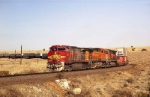BNSF'S Clovis Sub